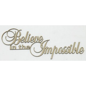 BELIEVE IN THE IMPOSSIBLE